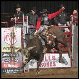 World's Toughest Bulls & Broncs