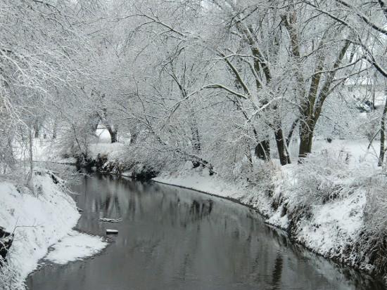 'Winter Day on Duck Creek,' by Ann DeSalvo