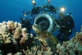 Deep Sea 3-D