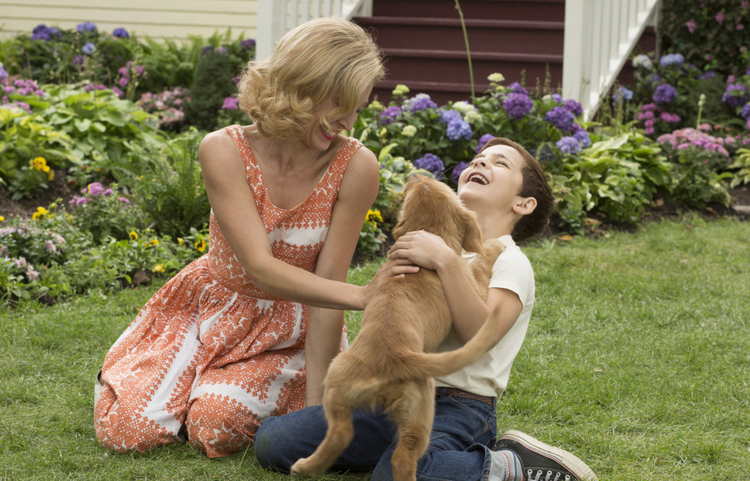 Juliet Rylance and Bryce Gheisar in A Dog's Purpose