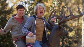 Jim Carrey and Jeff Daniels in Dumb & Dumber To
