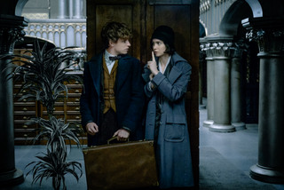 Eddie Redmayne and Katherine Waterston in Fantastic Beasts & Where to Find Them