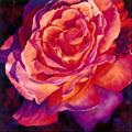watercolor by Connie Glowacki