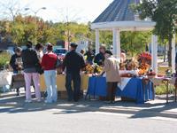 The Garden Harvest Festival