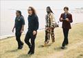 The Ari Ben Moses Band
