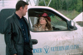 Matthew Perry and Elizabeth Hurley in Serving Sara