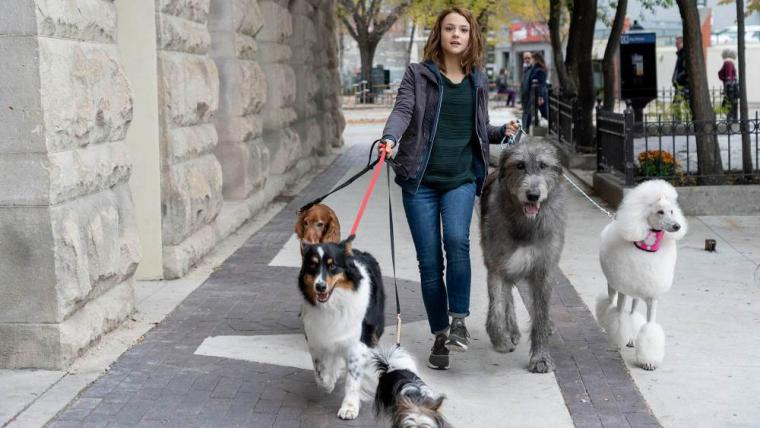 """It's a Dog Lover's Life: """"John Wick: Chapter Three – Parabellum,"""" """"A"""