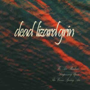 "dead lizard grin's ""We Are Shadows Dispersing Upon the Warm Spring Air"""
